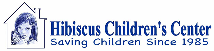 Hibiscus Children's Center Retina Logo